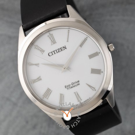 Citizen Watch 2019