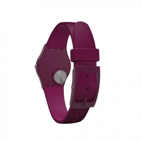 Standard ladies watch Autumn and Winter Collection Swatch